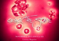 Crack the Spi Cover